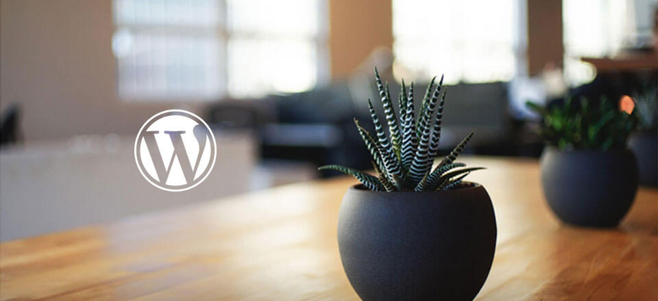 How to delete a WordPress theme from WordPress
